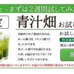 otamesi_box